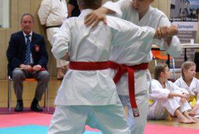 Erste Hasloher Karatemeisterschaften