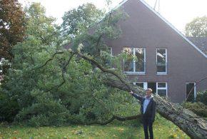 Bönningstedt: Baum auf Kirche gestürzt
